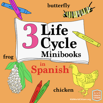 3 Science Life Cycle Minibooks: Frog, Butterfly, Chicken ~ in Spanish