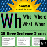 3 Sentence Stories with WH Questions