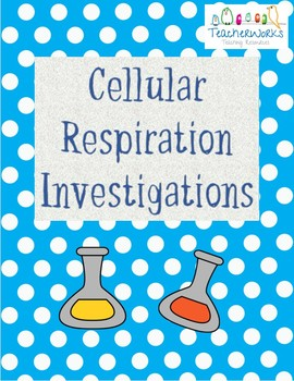 3 Theory Based Cellular Respiration Investigations/Experiments