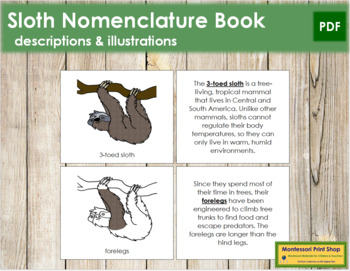 3-Toed Sloth Nomenclature Book