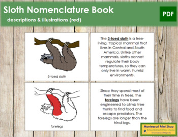 3-Toed Sloth Nomenclature Book (Red)