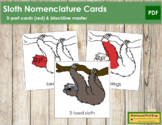 3-Toed Sloth Nomenclature Cards (Red)