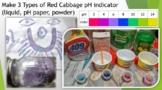 3 Types of Red Cabbage pH indicator (liquid, pH paper, pow