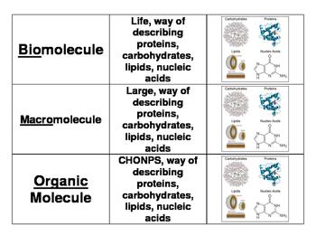 3 Way Match - Biomolecules