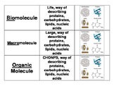 3 Way Match - Biomolecules
