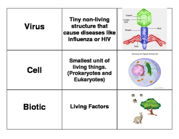 3 Way Match - Cells vs Viruses