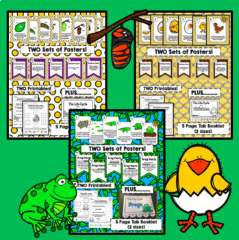 THREE Life Cycles Bundle - Butterfly, Frog, Chicken