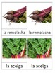 3 part Montessori cards in SPANISH - Verduras parte 2