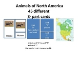 3-part cards ---Animals of North America