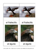 3 part cards MONTESSORI in SPANISH: AVES (Birds)