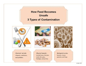 3 types of Contamiation