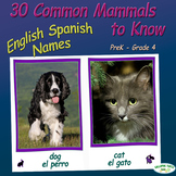 30 Common Mammals to Know - English and Spanish Names