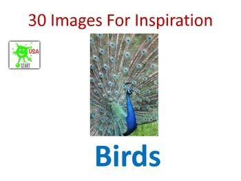 30 Images for Inspiration - Birds