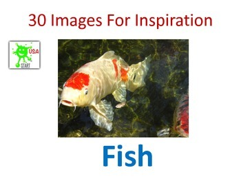 30 Images for Inspiration - Fish