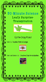 30-Minute Science- Celery/Lettuce Transpiration