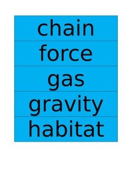 30 Next Generation Science Standards Word Wall Words/Flash Cards