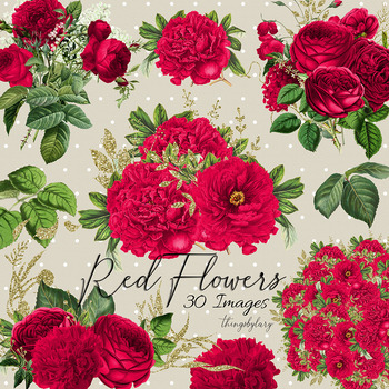30 Red Flowers Rose Peony Antique Old Bouquet Digital Images