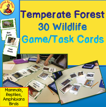 30 Temperate Forest WILDLIFE PHOTO GAME TASK CARDS, BULLETIN BOARD 3-LS4-3