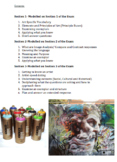 30 page art theory booklet with activities and assessments