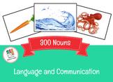 300 Nouns