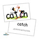 301 SnapWords® Sight Words Teaching Cards Kit