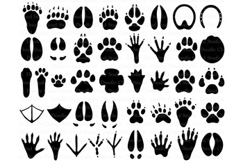 Download 31 Animal Paw SVG, Paw Prints SVG Files for Silhouette ...