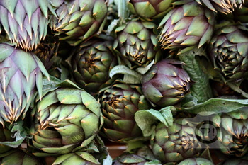 313 - VEGETABLES, ARTICHOKE [By Just Photos!]