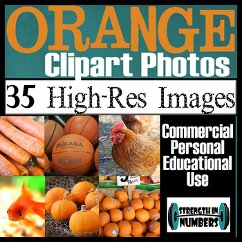35 Photos ORANGE Objects Commercial Clip Art High Res Photographs