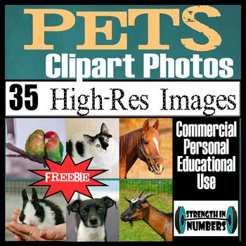 35 Photos PETS/ANIMALS Commercial Clip Art High Res Photographs