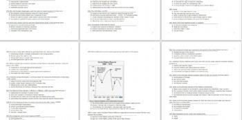 351 US History Grade 7 NYS Multiple-Choice topics 7.4 and 7.5
