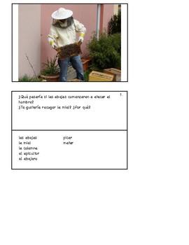 38 Spanish-Speaking Picture Prompts: El condicional (38 cards)