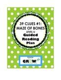 39 Clues Book 1: The Maze of Bones - Level U - Guided Read