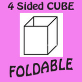 3D 4 Sided Stand Up Cube Foldable Graphic Organizer