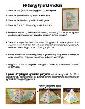 3D Energy Pyramid Interactive Notebook Activity