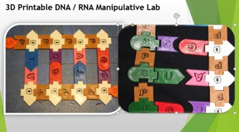 3D Printable DNA / RNA Manipulative Lab #1