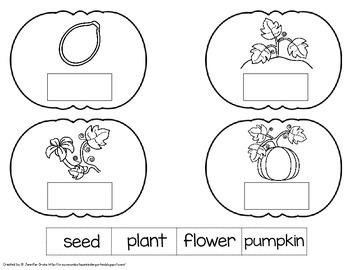 3D Pumpkin Craftivity