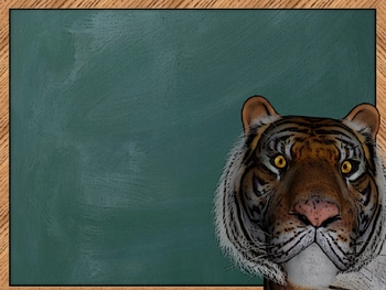 3D TWINZ: Customer Appreciation Special! Tiger Presents