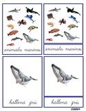 3P Sea Animals Montessori Cards