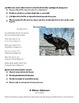 3rd-5th ELA -Common Core- Assessment Cold Reads-Stories