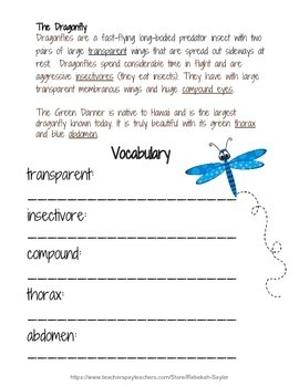 Dragonflies: 3rd Grade Math, Reading, and Science Summer Review