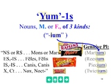 3rd Declension I-stems - The Best Powerpoint ever.