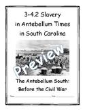 3rd Gr SS: 3-4.2 Civil War & Reconstruction: Slavery in An