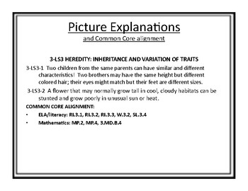 """FULL 3rd Grade Next Generation Science Posters (Common Core Align) """"I Can..."""""""