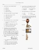 3rd Grade Ancient Greece Unit test
