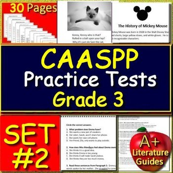 photo relating to Caaspp Practice Tests Printable titled Caaspp Train Worksheets Schooling Supplies TpT