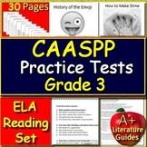 3rd Grade CAASPP Test Prep Practice for English Language Arts