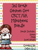 3rd Grade Bundle GA Milestones, CC Science, SS, & Math Review Year Round Quizzes