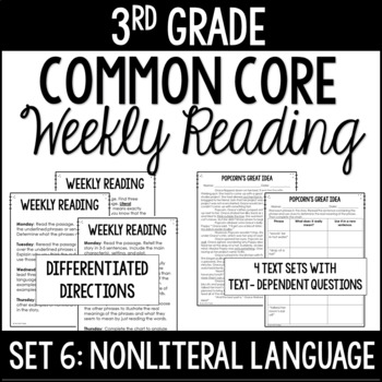3rd Grade Reading Review | Set 6: NonLiteral Language/Idioms | Common Core