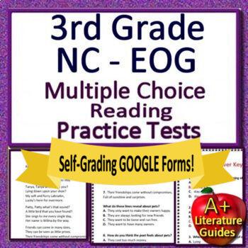 3rd Grade NC EOG Reading Test Prep: North Carolina End-of-Grade Assessment