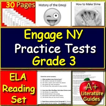 3rd Grade Engage NY Test Prep Practice Tests ELA New York State